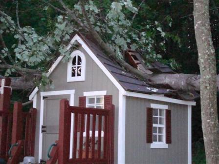 Our neighbor's tree went right through the center of our playhouse!